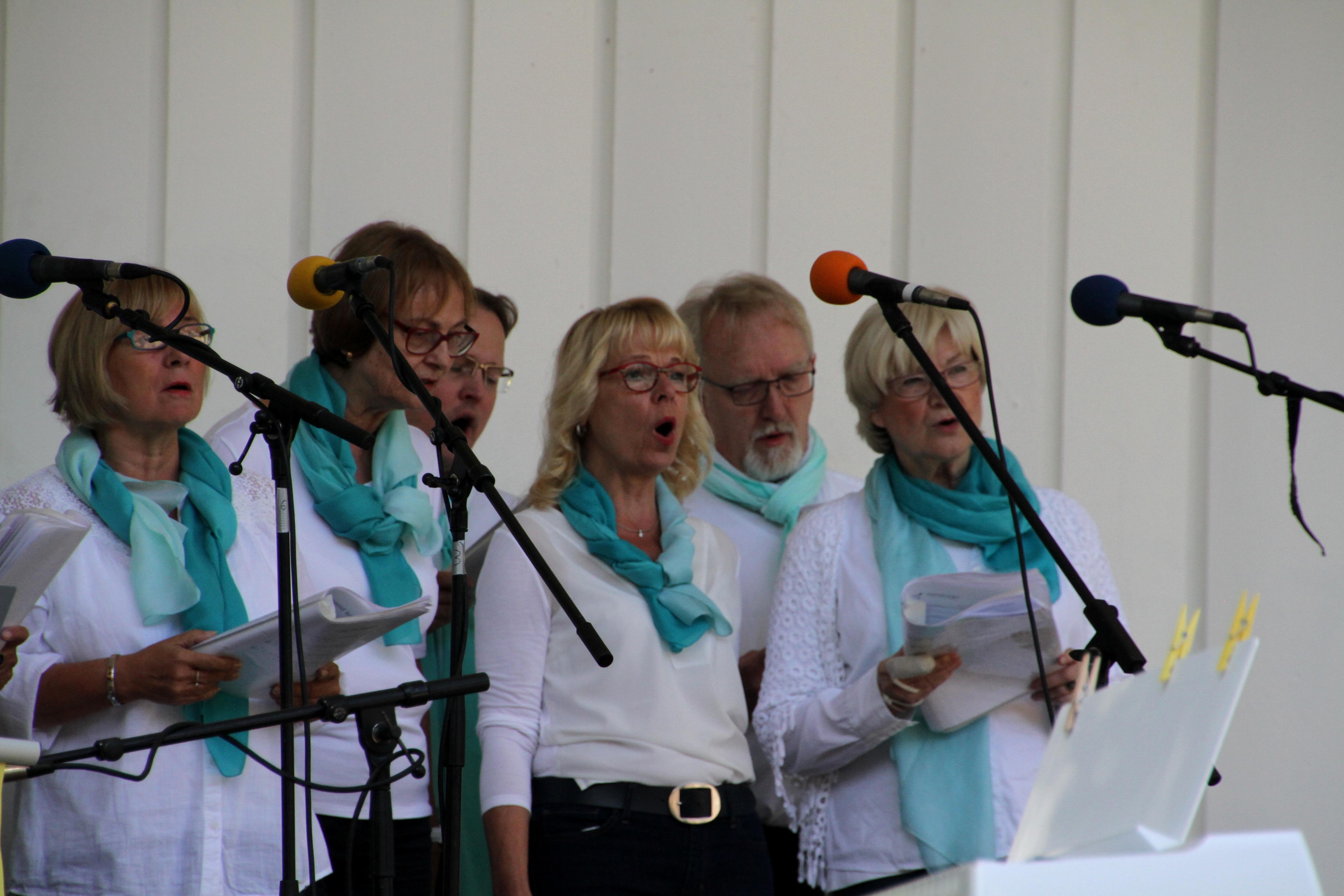 180826_Vocal_Colours_Chorfestival_15_Bramfelder_Stadtteilchor